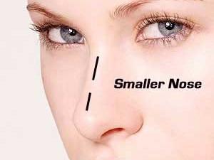 Smaller Nose